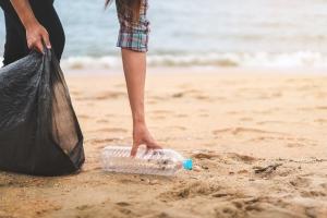beach clean ups barton